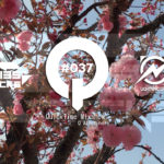"♫TRANCE MIX ""QuickTime"" #037 Mixed by Q(Atmosphere)"